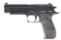 Blackcat High Precision Mini Model Gun P226 - Black