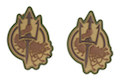 Costa Ludus Patch - PVC Diecut - (MultiCam) - 2pcs / Set