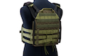 Crye Precision (By ZShot) Jumpable Plate Carrier JPC 2.0 w/ Flat M4 Molle Front Flap (M Size / Ranger Green)