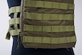 Crye Precision (By ZShot) AVS / JPC Zip-On Molle Back Panel (L Size / Range Green)
