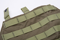 Crye Precision (By ZShot) AVS / JPC Zip-On Molle Back Panel (M Size / Range Green)