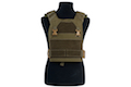 Esstac Daeodon Plate Carrier with Medium Cobra Buckle Belt - Ranger Green