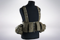 LBX Tactical Lock & Load Chest Rig - Ranger Green