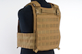 LBX Tactical Armatus II Plate Carrier (M Size / Coyote Brown)