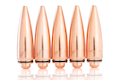 SAT Dummy Cartridges for Socom Gear M107
