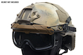 TMC SF QD Goggle (Coyote Brown)
